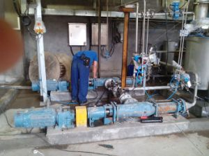 Mono Type Pump for Wastewater Treatment pictures & photos