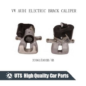 Rear Electric Caliper 5n0615403 5n0615404 for Q3/Cc/Passat/Passat pictures & photos