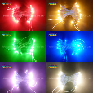 9mm Red LED Exposure Lamp String Lamp Beads Advertising Lamp pictures & photos