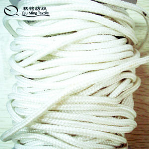 Custom Hight Quality Bright Polyester Rope pictures & photos