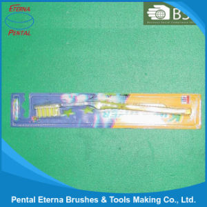 Good Quality China Tooth Brush pictures & photos