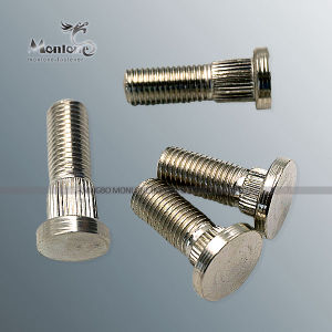 M3-M40 Non Standard Customized Special Fastener, Special Screw (FB021)