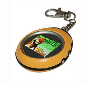 Newst Design OEM Digital Photo Keychain pictures & photos