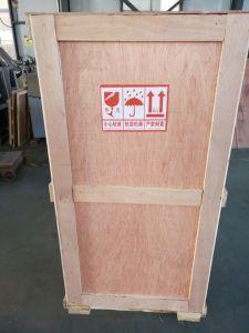 Dpp-80 Liquid Blister Packaging Machine pictures & photos