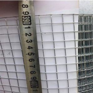 Hot Dipped Galvanized Welded Wire Mesh Used for Construction ISO9001 pictures & photos