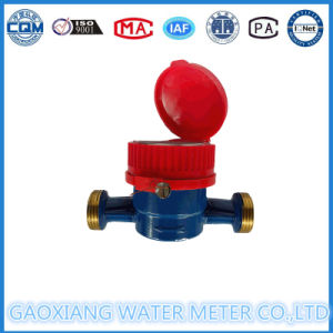 Single Jet Brass Body Hot Water Meter pictures & photos