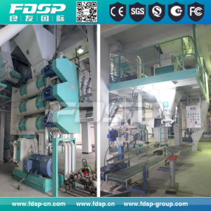 Fdsp Customized Automatic Animal Feed Production Line with ISO Certificate pictures & photos