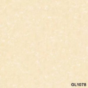 40X40′ Tiles with Top Quality (GL1007) pictures & photos