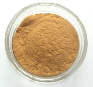 High Quality 95% Magniferin Mango Leaf Extract pictures & photos
