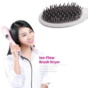 2 in 1 Blower Brush Hair Dryer Styler Hair Iron pictures & photos