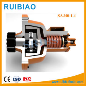Sribs Saj40 Anti-Fall Safety Device for Construction Hoist pictures & photos