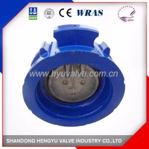Single Plate Check Valve in Cast Iron with DIN Standard pictures & photos