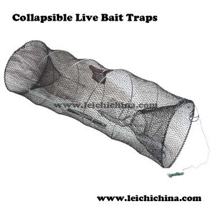 Top Quality Collapsible Live Bait Traps pictures & photos