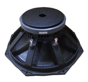 L15/6563-15 Inch Professional Audio PA Loudspeaker pictures & photos