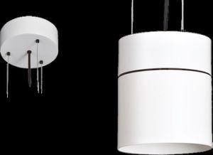LED Indoor Classic Aluminum Chandelier (DD101)