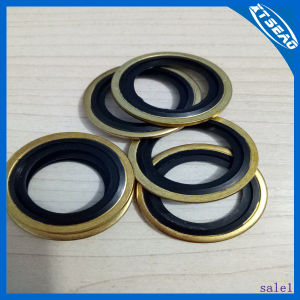 Compound Bonded Washers / Metal Combination Gasket/ Self Centering Washer pictures & photos
