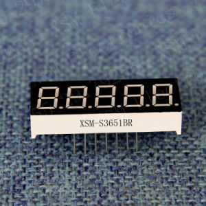 5 Digit 7 Segment LED Numeric Display