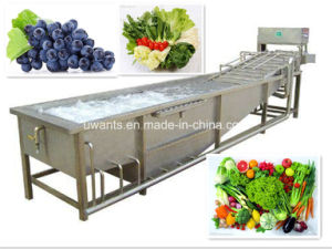 Hot Sale Stainless Steel Automatic Vegetable Fruit Washing Equipment pictures & photos
