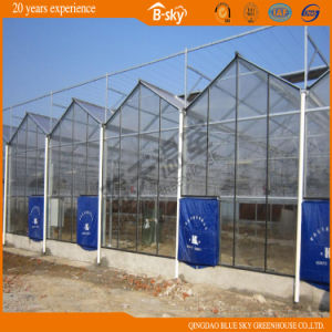 Multipurpose Multi-Span Glass Greenhouse with Long Life-Span pictures & photos