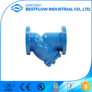 Ductile Iron/Cast Iron Flange End Y Type Strainer pictures & photos
