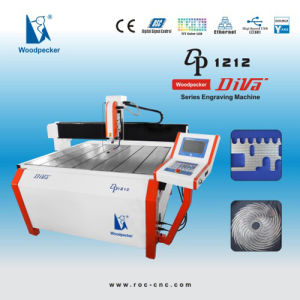 CNC Router/CNC Engraving Machine (Woodpecker DP-1212)