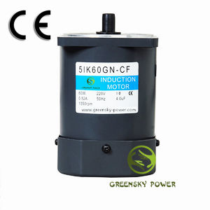 Three Phase110V/220V AC Motor (6W~250W) pictures & photos