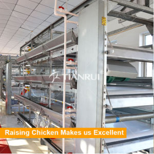 Tianrui design High Automatic H type poutlry broiler battery cage in Nigeria / Africa pictures & photos