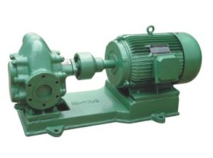 2cy120/3 Gear Pump for Crude Oil Transfer pictures & photos