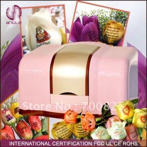 Hot Sale Most Popular Speaking Rose Flower Printer (UN-FL-MN103) pictures & photos