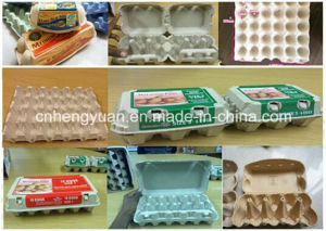 Super Quality Automatic Egg Tray Machine pictures & photos