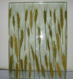 Katedral Stained Laminated Glass Safety Cover for Kitchen pictures & photos