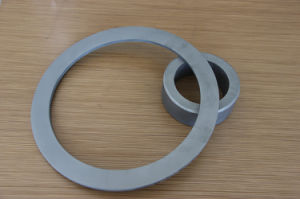 Tungsten Carbide for Mechanical Seal Ring pictures & photos