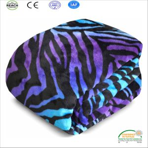 Printed Thick Coral Fleece Blanket with Heming Edges pictures & photos