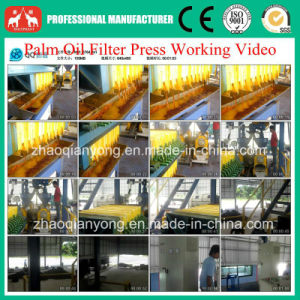 1t-20t/H (FFB) Palm Fruit Oil Extraction Equipment pictures & photos