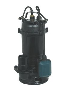 Electric Submersible Drainage Sewage Pump for Dirty Water (WQ) pictures & photos