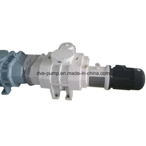 Roots Vacuum Pump Used for Vacuum Heat Treatment pictures & photos