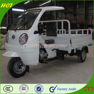 High Quality Chongqing Motor Trike pictures & photos