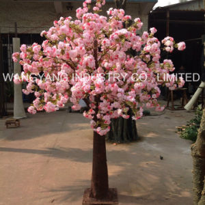 Artificial Fake Fiberglass Sakura Cherry Blossom Tree pictures & photos