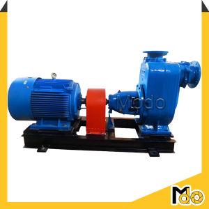 Vacuum Priming Pump for Sprinkler Irrigation pictures & photos