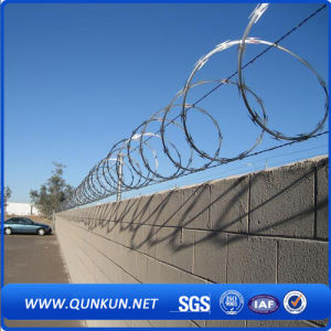 Good Galvanized Concertina Razor Barbed Wire pictures & photos