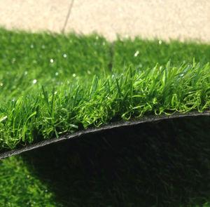 25mm Artificial Plant/Grass for Garden pictures & photos