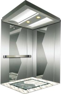 Italy Professional Home Hydraulic Villa Elevator (RLS-115) pictures & photos