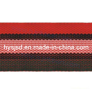 High Quality Striped Cotton Webbing for Luggage Belt pictures & photos