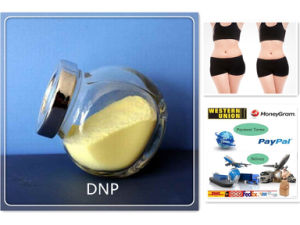 Weight Loss Supplements Yellow Powder 2, 4-Dinitrophenolate DNP pictures & photos