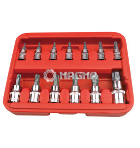 13 PCS Star Bit Socket Set (MG30013) pictures & photos