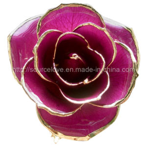 24k Gold Purple Plated Rose (MG022)