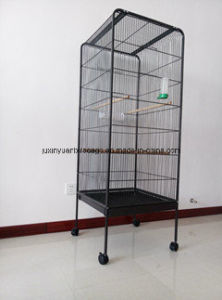 Favored Price/Factory Supplier Pet Bird Cage pictures & photos
