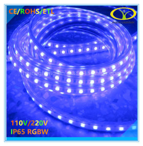 Hot Sales 120V IP65 RGBW LED Strip with ETL Certification pictures & photos