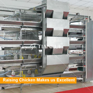 Multi-Tier Hot Dipped Galvanized Chicken Coop for Pullet pictures & photos