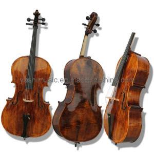 Advanced Cello (YSC010)